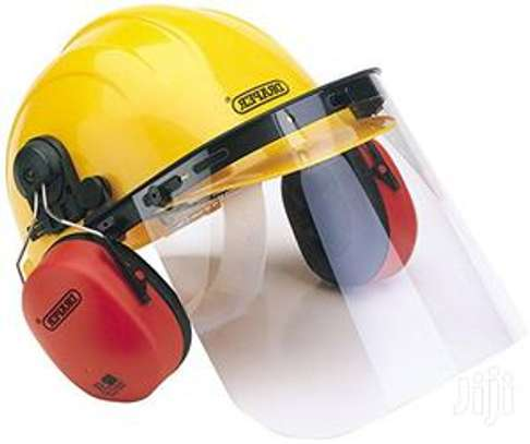 Safety Helmet with Face Shield and Ear Muffs