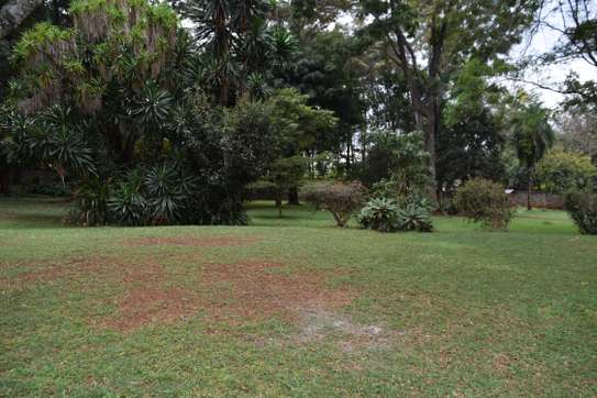 5 bedroom house for rent in Nyari image 14