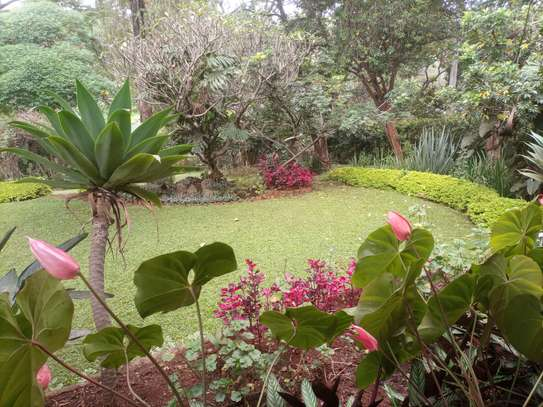 4 bedroom house for rent in Lavington image 5