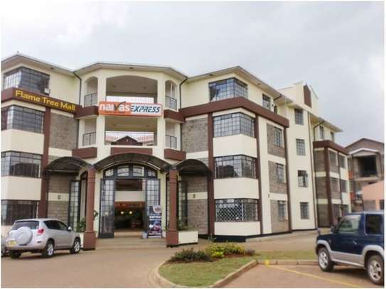 Thika - Flat & Apartment image 4