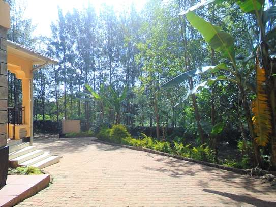 4 bedroom townhouse for rent in Ngong image 16