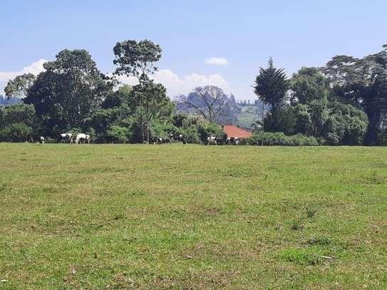 Cianda - Land image 5