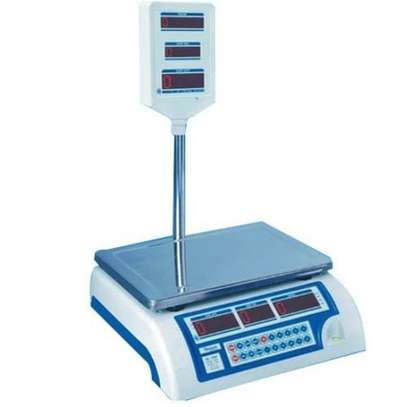 ACS 30 Digital Weighing Scale image 1