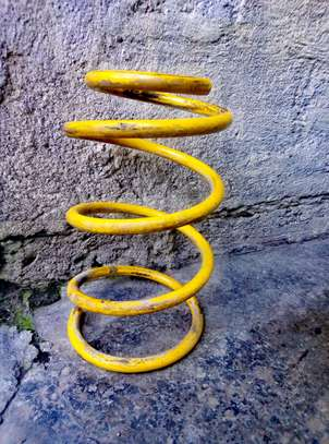 coil springs image 1