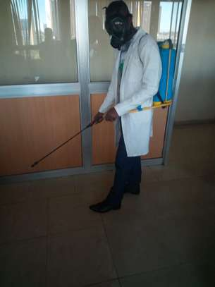 BEDBUG & COCKROACHES FUMIGATION & CONTROL SERVICES IN ATHI RIVER image 1