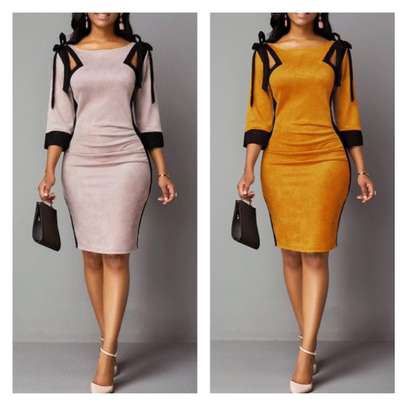 Elegant ladies dresses