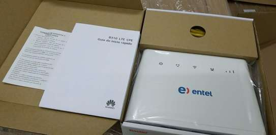 Faiba Routers Huawei
