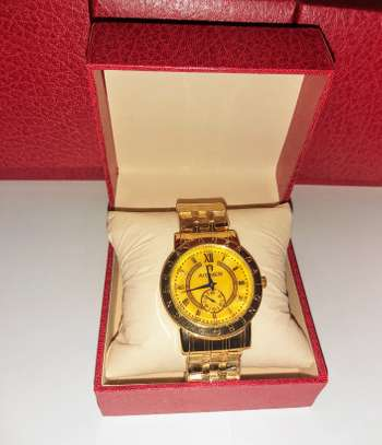 Male Aigner Gold Wrist Watch