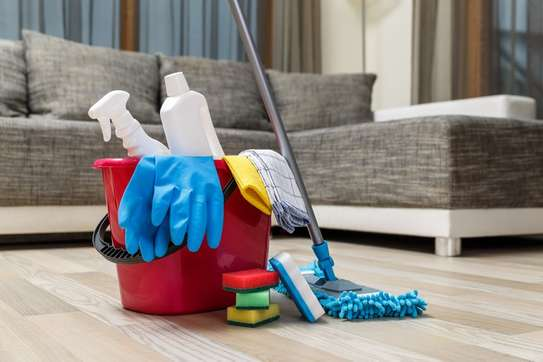 Hire Reliable & Affordable Gardening, Fundis, Cleaning, Pest Control,  Waste Removal,  Appliance Repair & Domestic Workers image 5