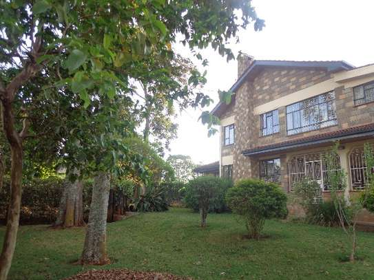 6 bedroom house for rent in Nyari image 5
