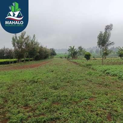 0.5 ac land for sale in Limuru Area image 3