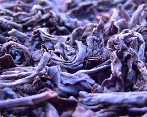 PURPLE TEA: Kenyans'Secret Weapon Against Viral Infections... and everything else! image 7