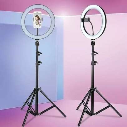 10 Inch LED Ring Light with Tripod Stand, 3 Color Modes and 10 Brightness, Ideal Ring Light for Streaming, Photography Lighting image 1