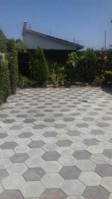 Cabro Blocks and Concrete Paving Tiles image 9