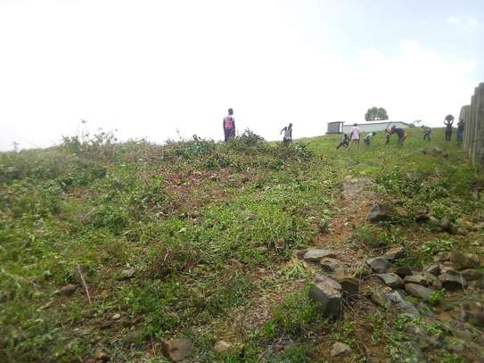 0.25 ac land for sale in Riat Hills image 8