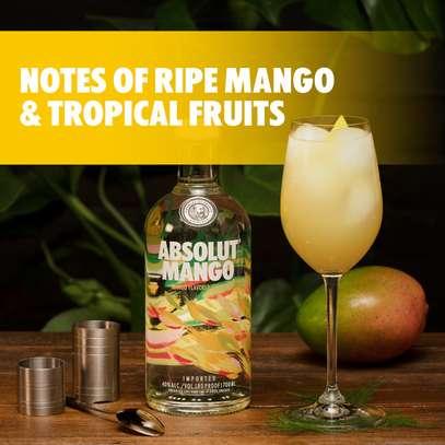 Absolut Mango Flavored Vodka - 750ml image 2