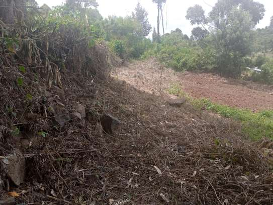 Plot with tilted image 1
