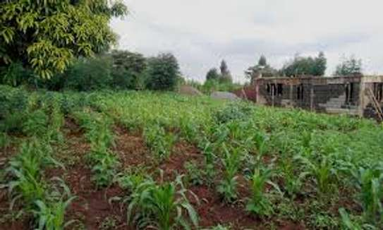 Gikambura Karai 1/4 Acre for Sale With Title image 1