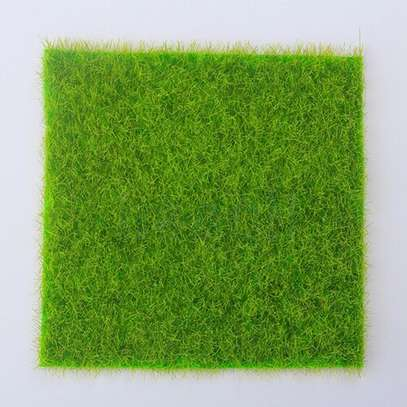 Superb Grass Carpets image 3