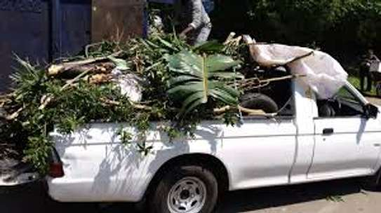All Removals and General Garden Services.Landscaping & Gardening Services image 9