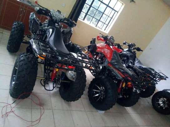 Quad bike sales, spares n repairs. image 1