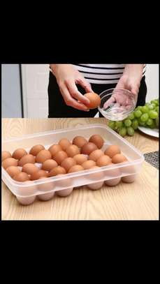EGG TRAYS