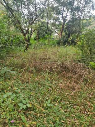 4 ac land for sale in Kilimani image 9