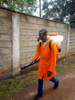 ELLA HOUSE CLEANING SERVICES & PEST CONTROL SERVICES IN NAIROBI KENYA image 2