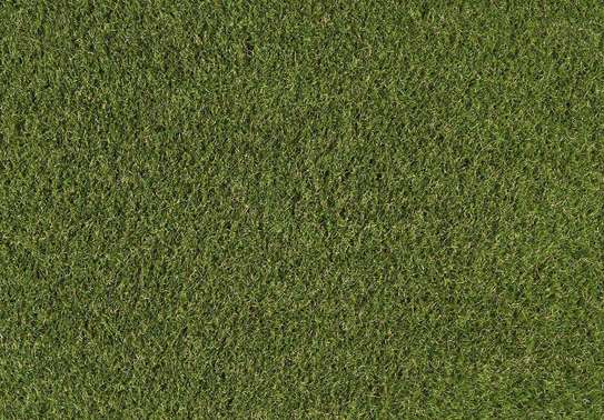 grass carpet influence on beauty and texture image 6