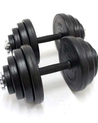 Adjustable Dumbbells Gym Weights for Sale