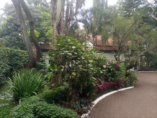 4 bedroom house for rent in Lavington image 4