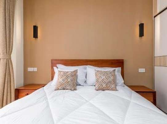 Furnished 1 bedroom apartment for rent in South C image 8