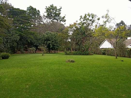 5 bedroom house for rent in Lavington image 6