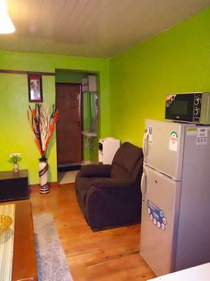 Furnished 1 bedroom apartment for rent in Kinoo image 5