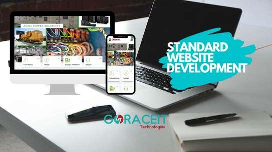Website Design and Development (Standard Website) image 1
