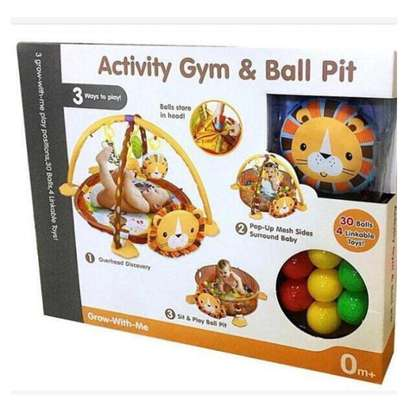 3 In 1 Baby Activity Gym, Play Mat And Ball Pit