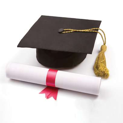 Bachelor of Science (Public Health) image 1