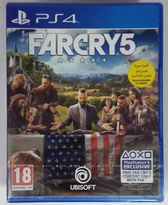Far Cry 5 PS4 image 3