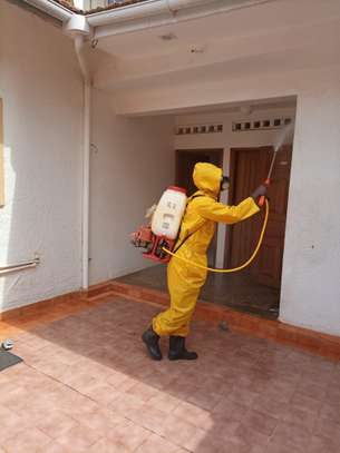 Fumigation and Pest Control services image 1