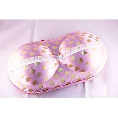 Travel Storage Bag Women Bra Case Underwear Packing Travel Organizer - Pink And Gold image 1