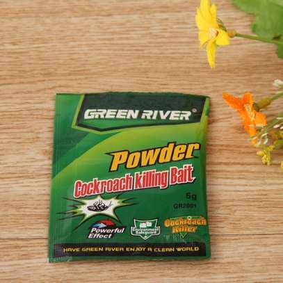 Cockroach Killing Bait Insecticide Powder - 50 Pcs per Box image 3