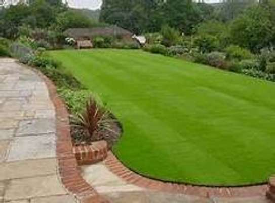 Chic Grass carpets image 4