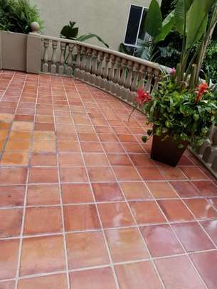 Cabro Blocks and Concrete Paving Tiles image 4