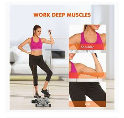 Offer! Fitness twist steppers image 1