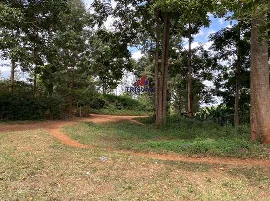 0.25 ac land for sale in Ruiru image 3