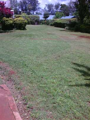 Lawn Mower And Grass Cutting Services image 2