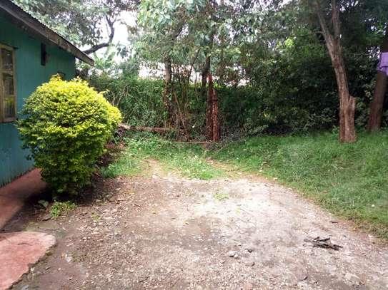 Ruaka - Land image 5