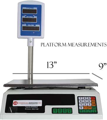 30 kg Digital Measuring Scales , Price Calculating Scale image 1