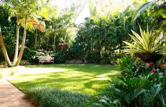 Professional Garden Layout Landscaping and Designs. Bestcare Landscaping Services. image 5