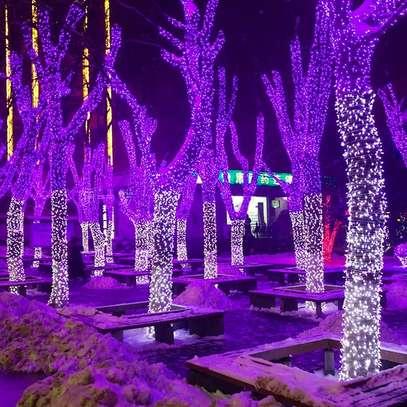 Party Decoration (Purple) image 1